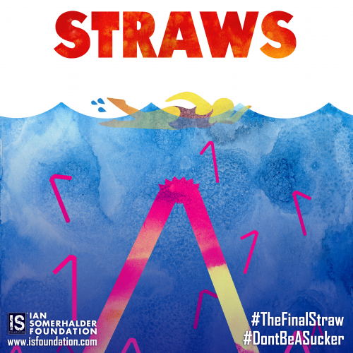 The Final Straw Poster
